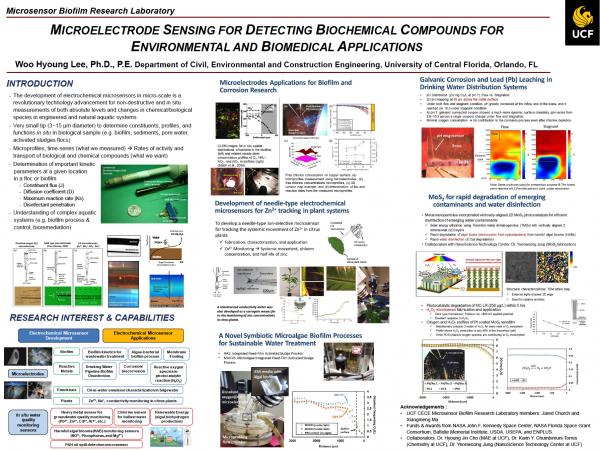 UCF Mayo Microsensors